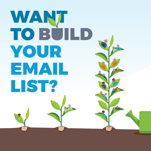 Cultivating your email list for long-lasting success